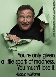 Little spark of madness robin williams